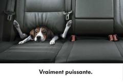 Publicités automobiles